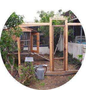 La casa de nos poules,Déco jardin
